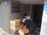 Takie 33 skrzynie rozdaliśmy naszym seniorom. Na samą myśl, jakie pyszności powstały z tych jabłek, burczy nam na Kieracie w brzuchach.
